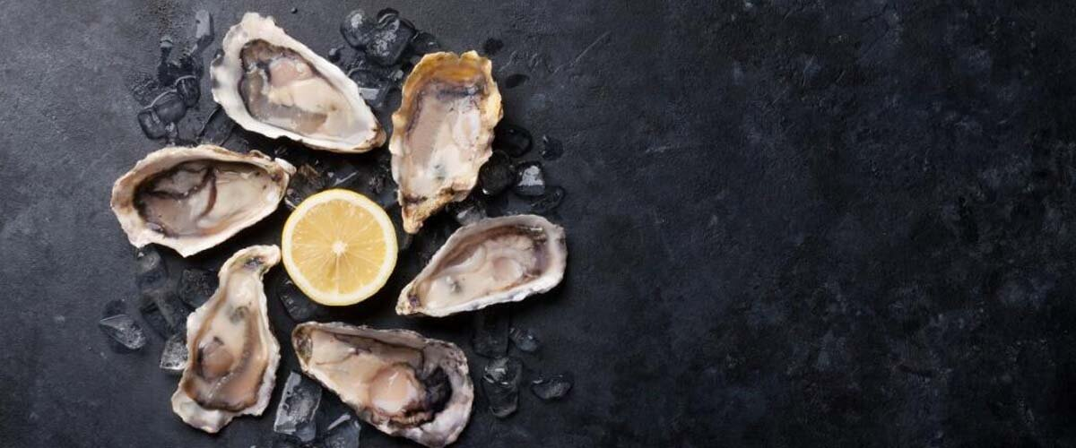 Everything You Need to Know About Oyster Extract