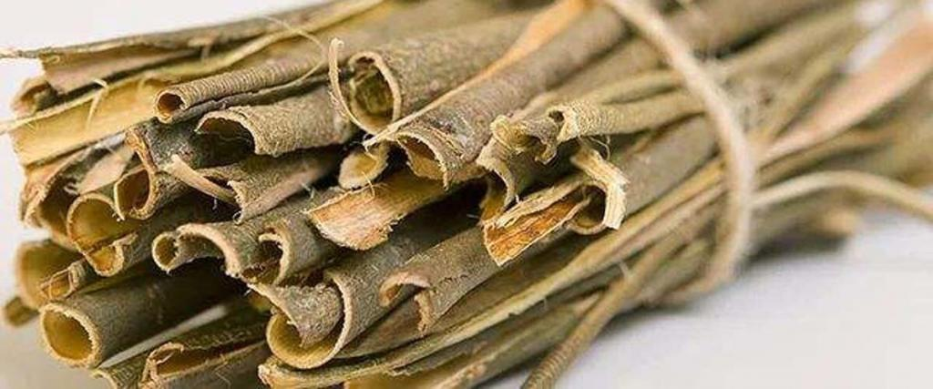 The Ultimate Guide to White Willow Bark Extract for Weight Loss